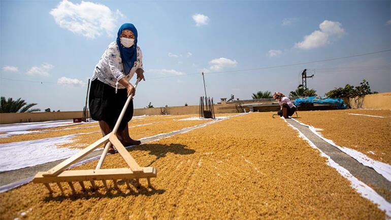 Mersin'in üreten kadınları: Mersin Kadın Girişimi Üretim ve İşletme Kooperatifi