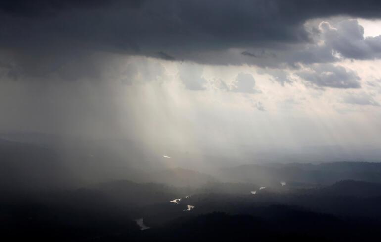 Facebookta satılık Amazon yağmur ormanları