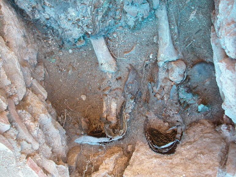Son dakika Son yılların en önemli keşfi: Mezarları açıldığında oturur halde bulundular