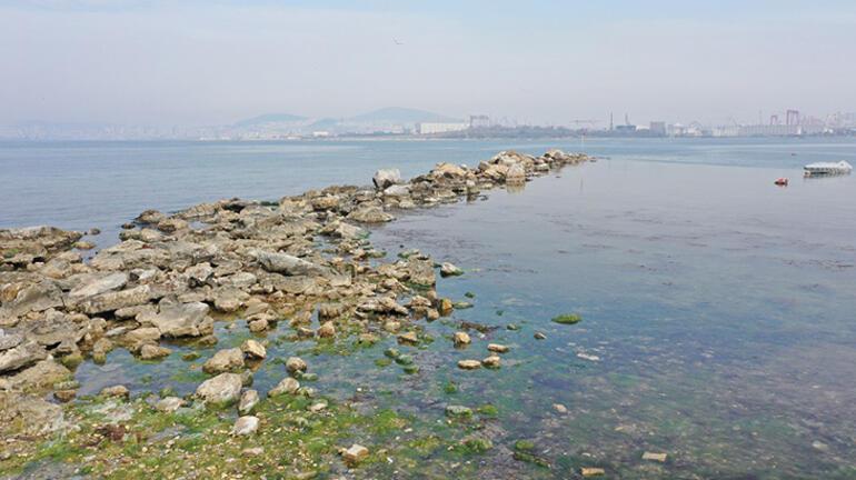 Şaşkınlık yarattı Tuzlada sular çekilince ortaya çıktı