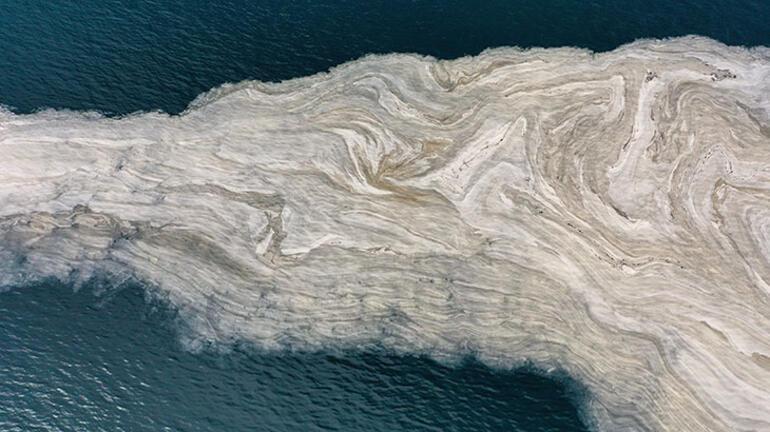 İzmit Körfezinde deniz salyası beyaz tabaka oluşturdu