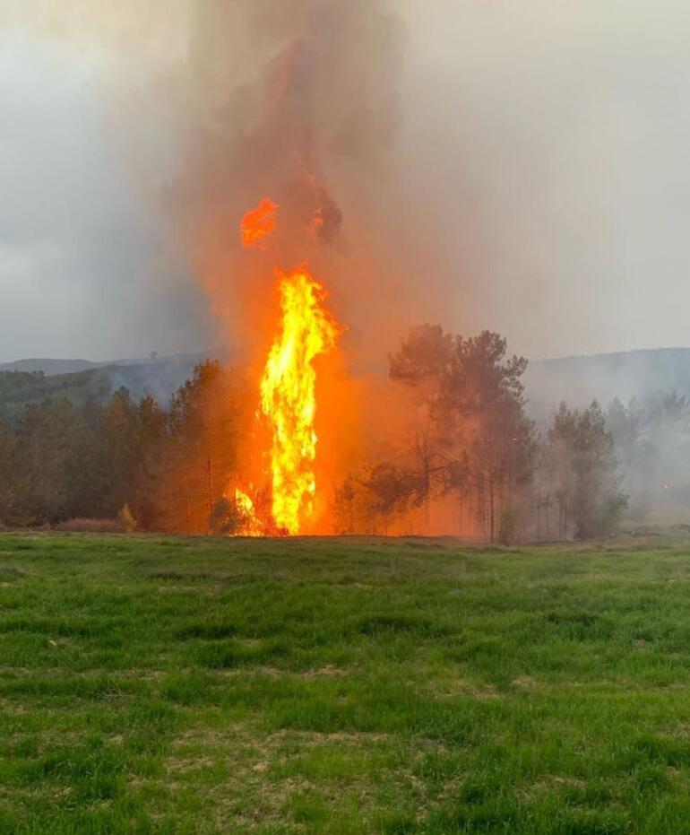 Son dakika Muğla ve İzmirde korkutan yangınlar