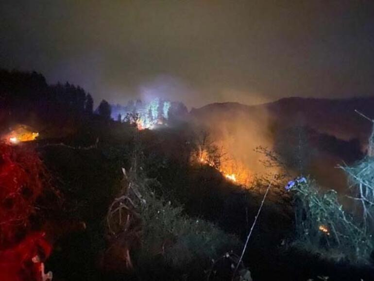 Son dakika: Rizede korkutan orman yangını
