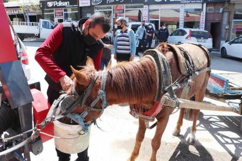Trafikte dört nala koşan at araçlara zarar verdi
