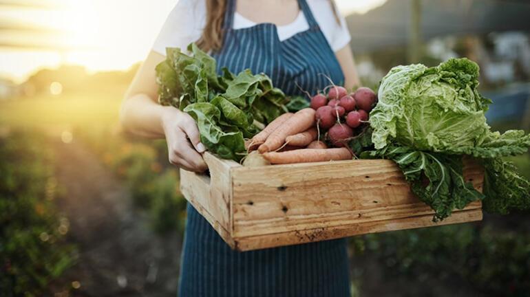 Organik ile organik olmayan gıda arasında nasıl bir fark var