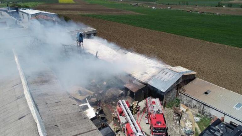 Silivride mangal kömür üretimi yapılan tesiste yangını