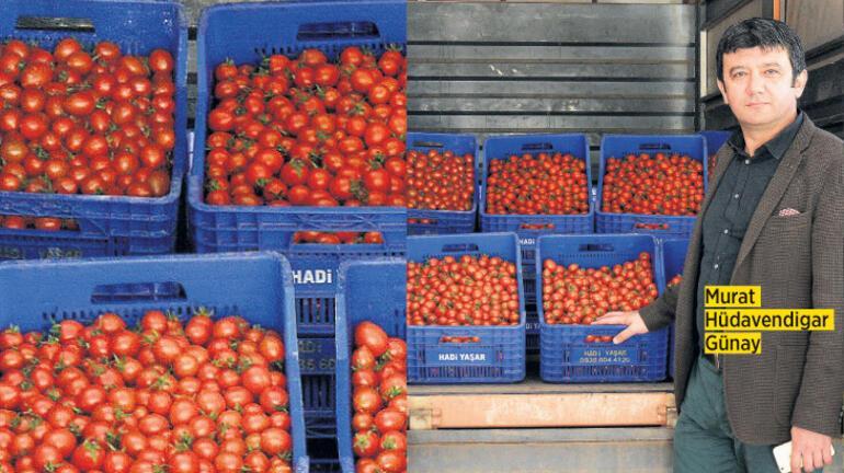 Tarımsal ekonominin gücüne güç katıyor