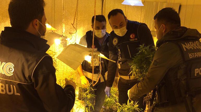 Polisler bile şaştı kaldı Zehir bahçesi