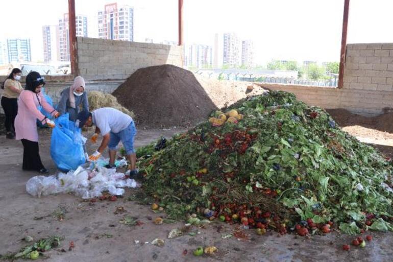 Gönüllü kadınlar, pazardaki sebze meyve atıklarını toplayıp gübreye dönüştürüyor