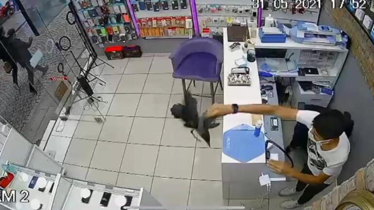 Üsküdarda dükkanda panik anları Karga bastı, ortalık karıştı