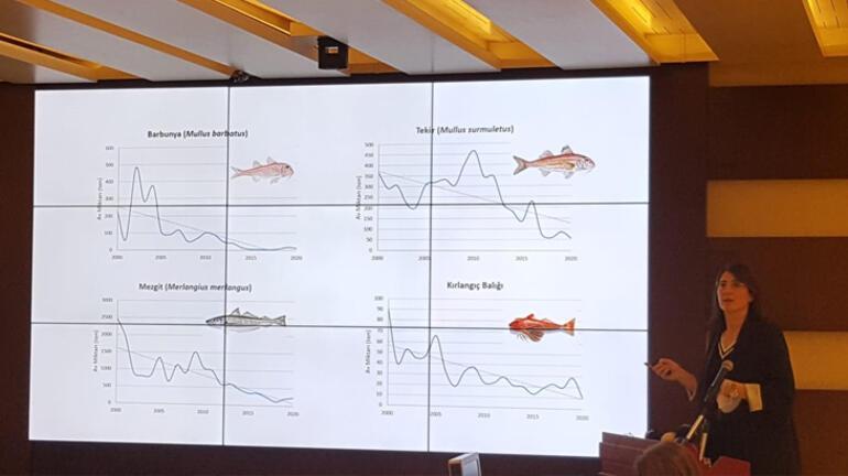 YÖK Başkanı Saraçtan müsilaj açıklaması: Bilimsel seferberlik başlatmalıyız