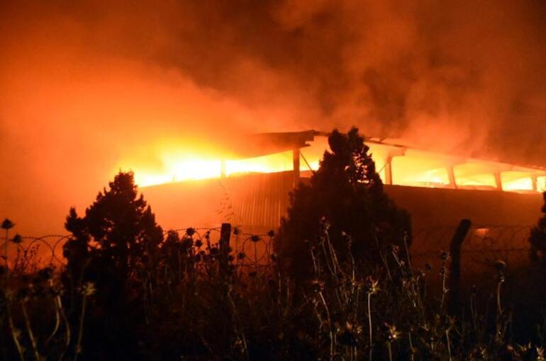 Alevler gökyüzünü aydınlattı Büyük yangın