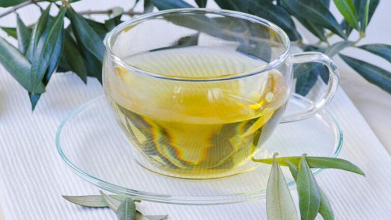 Zeytin Yaprağının Faydaları Nelerdir Zeytin Yaprağı Çayı Nasıl Yapılır