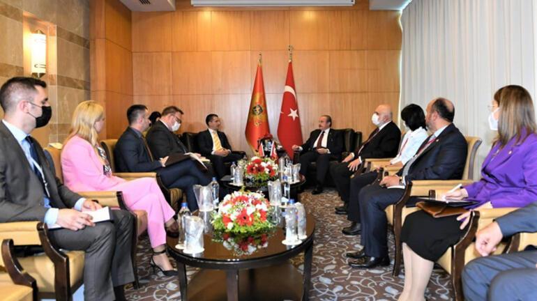 TBMM Başkanı Şentop, Karadağ Meclis Başkanı Becic ile görüştü