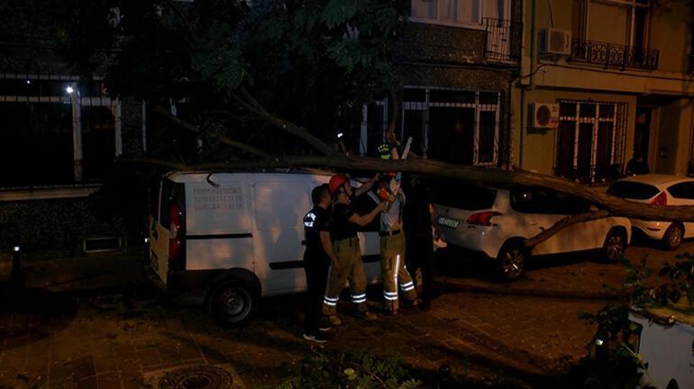 Sabaha karşı Beşiktaş...  Ticari aracın üzerine ağaç devrildi