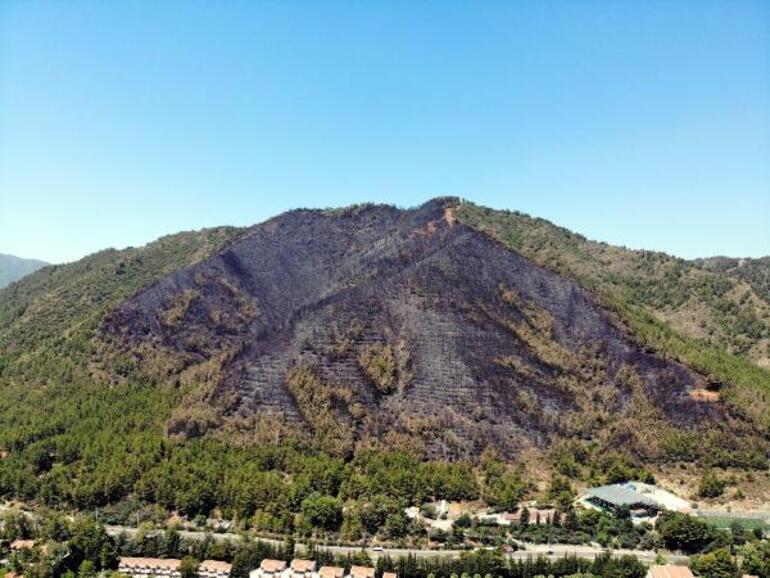 Marmaristeki orman işçisinin hayatını kaybettiği yangın enerji nakil hatlarından çıkmış