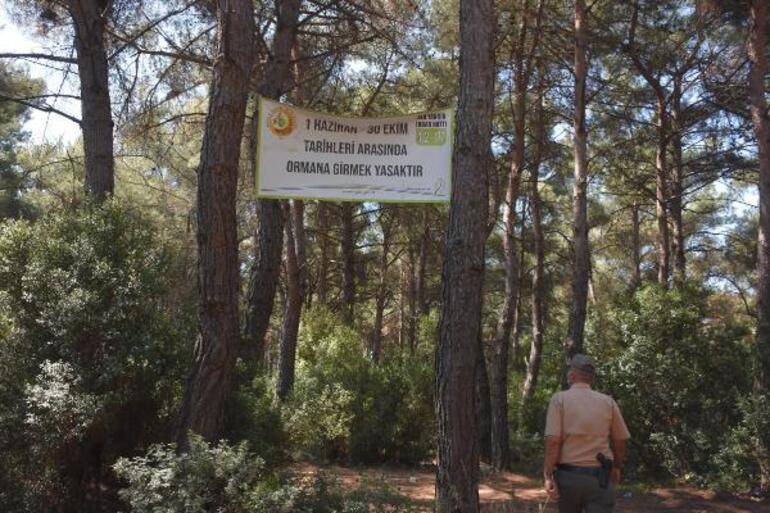 Valilik duyurdu  Ormanlık alanlara giriş yasaklandı