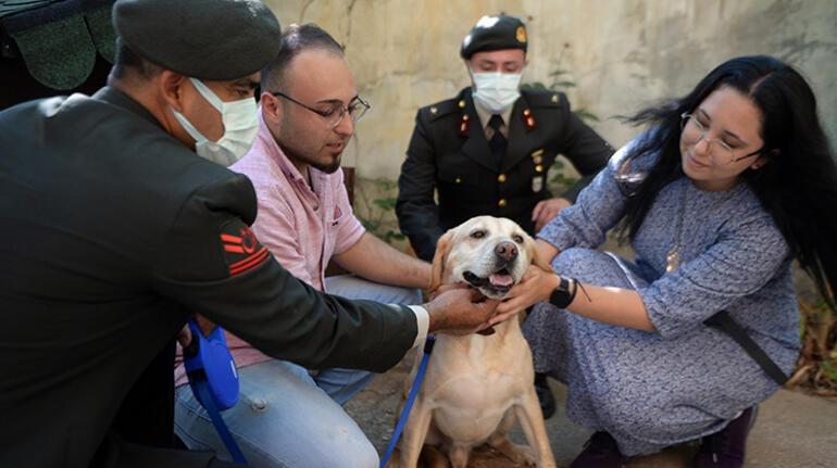 Oğullarını şehit verdikleri saldırıda gazi olan görev köpeğini sahiplendiler