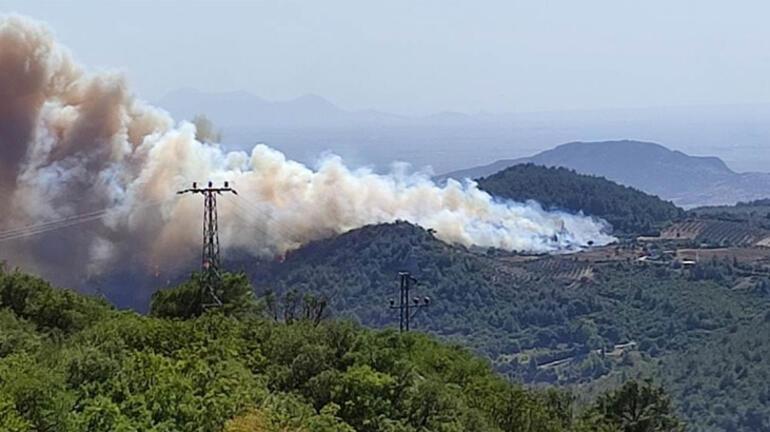 Osmaniyede orman yangını Köylüler bölgeden taşındı