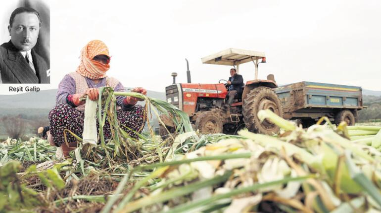 Tarlalar satılıyor çiftçiler kayıp