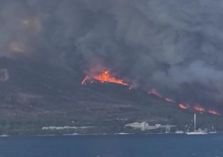 Son dakika Marmariste çıkan orman yangınına müdahale ediliyor