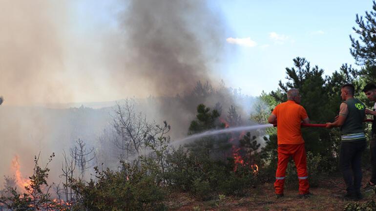 Kastamonuda orman yangını Ekipler bölgede