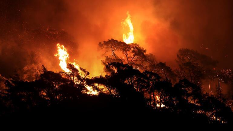 Son dakika haberi... Ciğerlerimiz yanıyor Bir orman yangını daha...