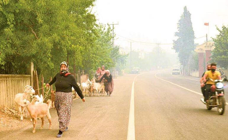 Sadece köyler, evler değil... Hayatlar küle döndü