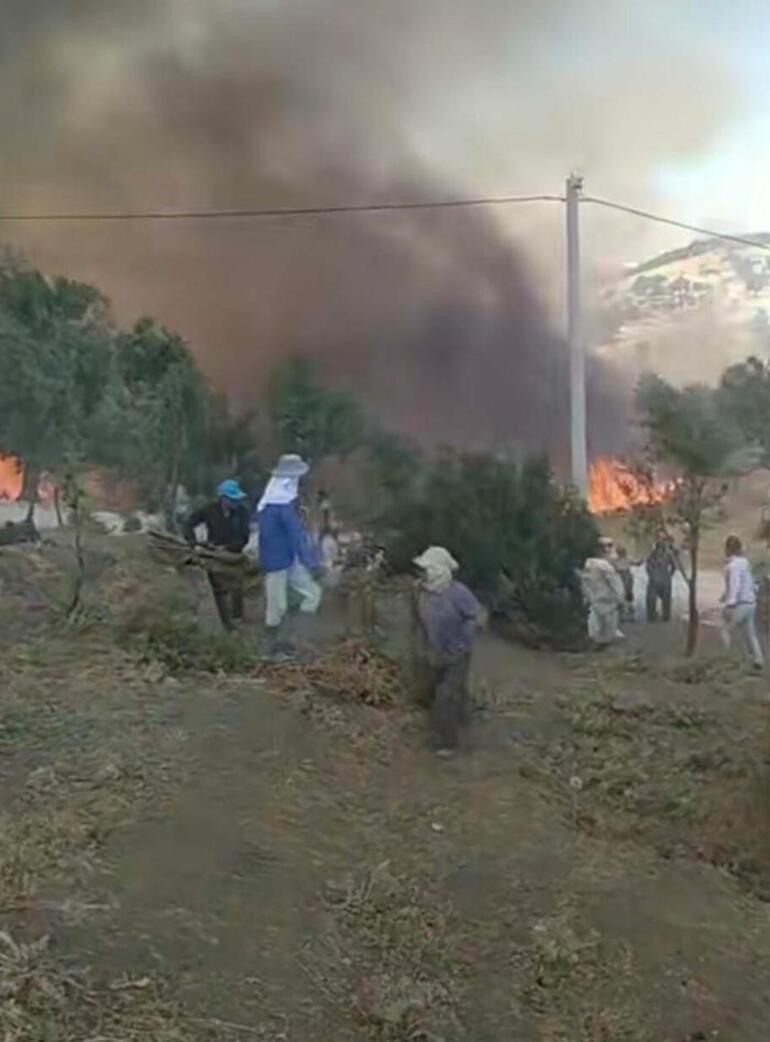 Aydında çıkan orman yangını Muğlaya sıçradı