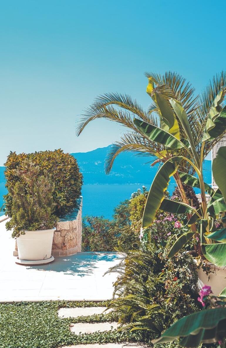 Yazlıkta tropikal tasarımlar