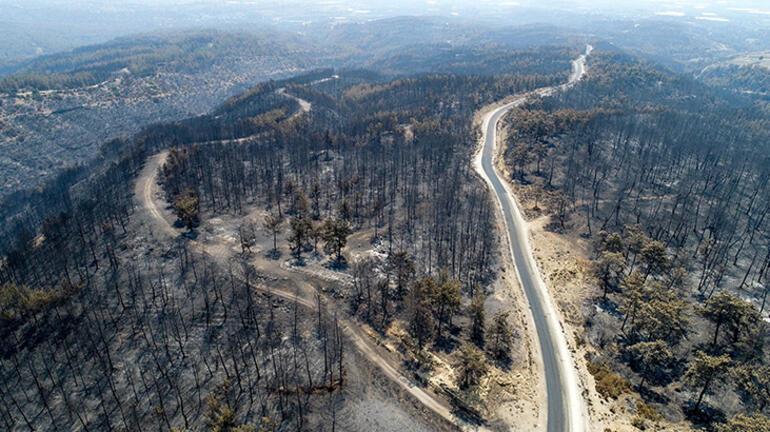 Son dakika Haberleri: Bir ilde daha yangın çıktı Ekipler bölgeye sevk edildi