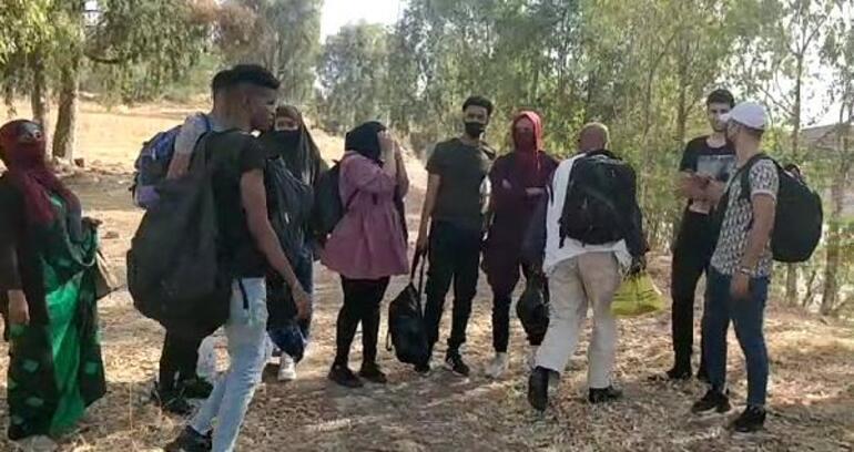 25 kaçak göçmen ormanda yakalandı