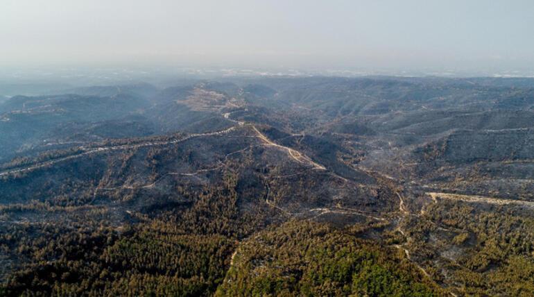 Son dakika: Türkiye dakika dakika takip ediyor İşte yangınlarda son durum