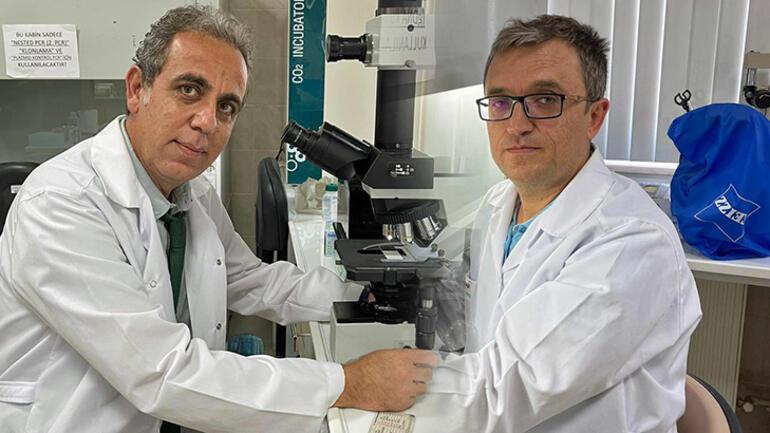 Asya kaplan sivrisineği ve diğer riskli türlerin Karadenizdeki varlığı tespit edilecek