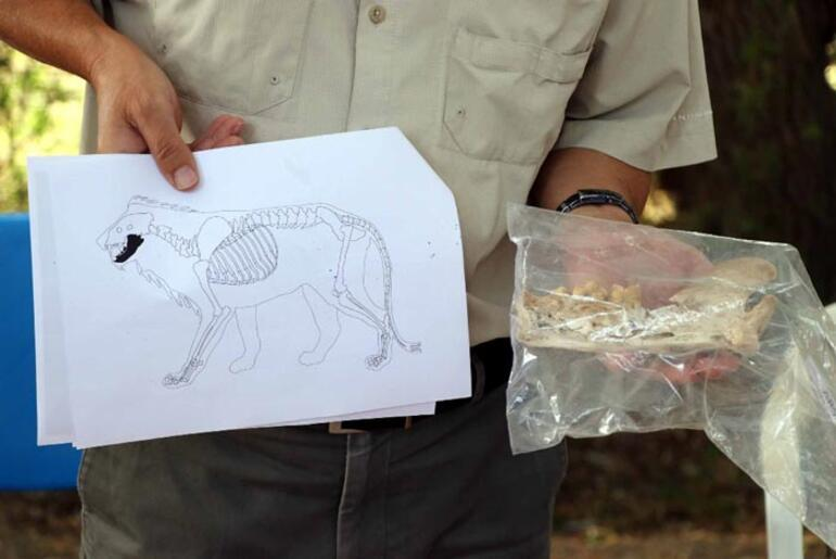 Anadoluda heyecanlandıran keşif 4 bin yıl öncesine ait