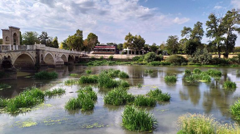 Tunca Nehrinde ot öbekleri oluştu