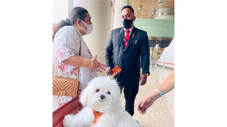 Köpeğini uçağa bindirmek için business classı kapattı