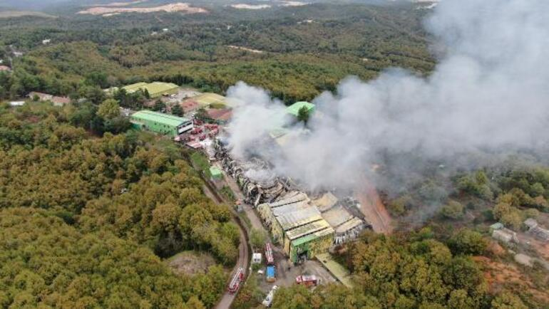 Son dakika... Şilede fabrika yangını Felaketin kıyısından dönüldü