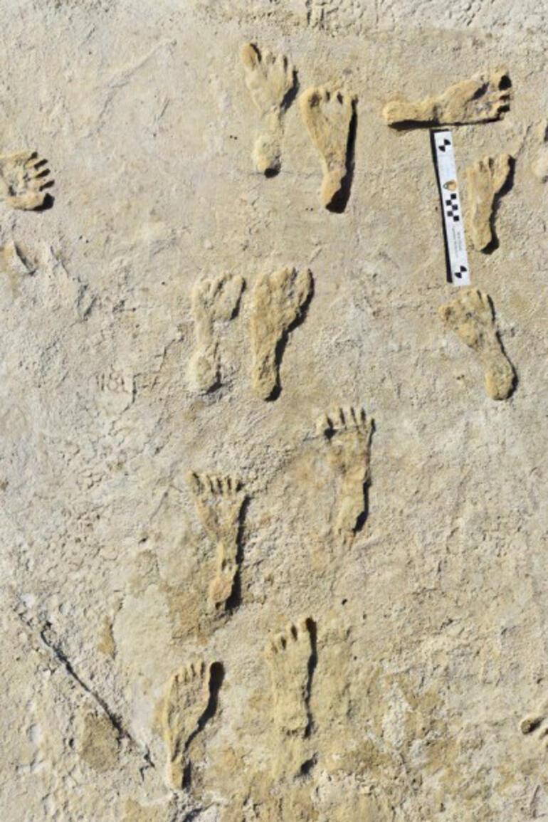 Amerikadaki ilk insanların tarihiyle ilgili kanıtlar ortaya çıktı